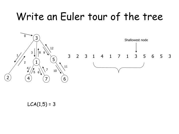Write an euler tour of the tree
