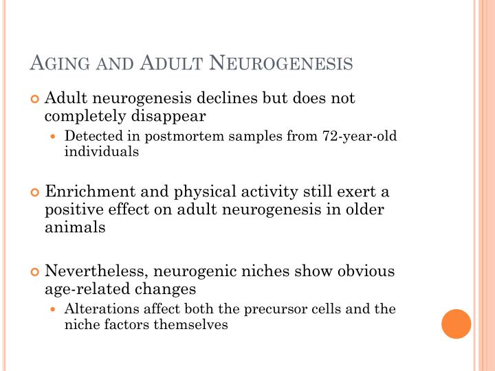 Aging and Adult Neurogenesis