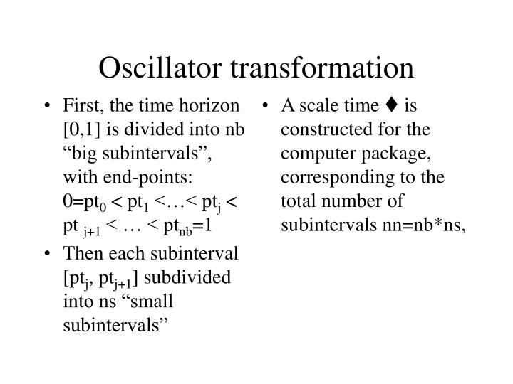 """First, the time horizon [0,1] is divided into nb """"big subintervals"""", with end-points:          0=pt"""
