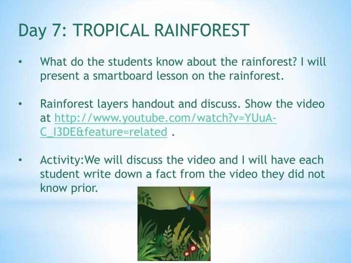 Day 7: TROPICAL RAINFOREST