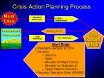 crisis action planning process5