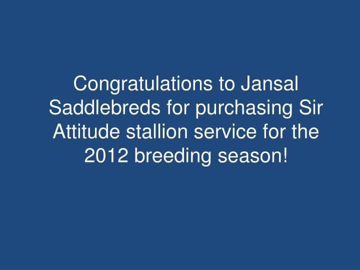 Congratulations to Jansal Saddlebreds for purchasing Sir Attitude stallion service for the 2012 breeding season!