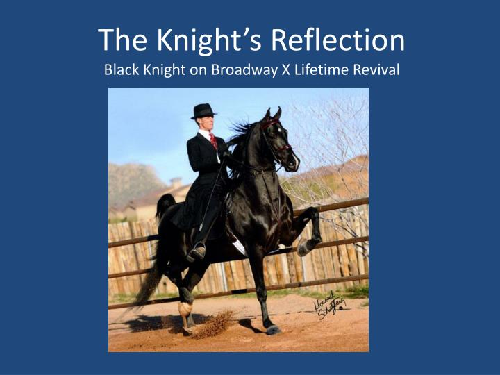 The Knight's Reflection