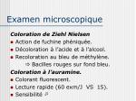 examen microscopique