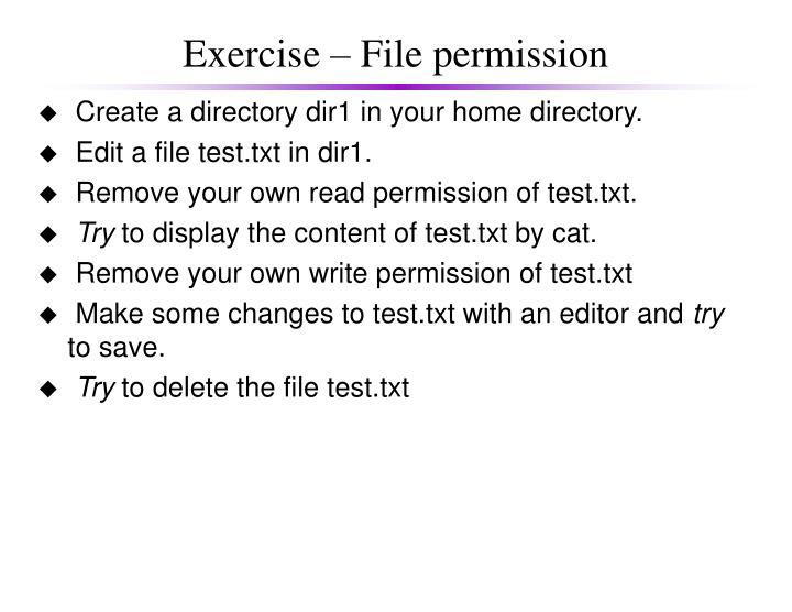 Exercise – File permission