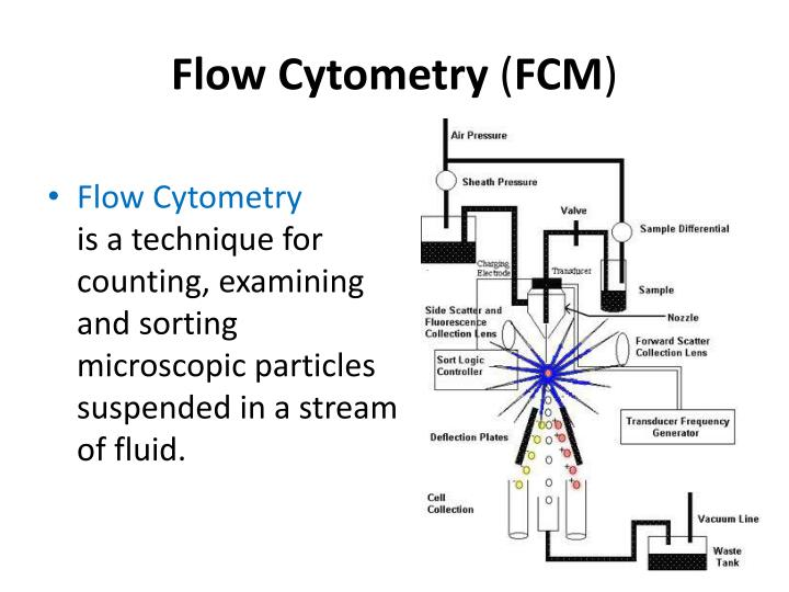 Flow cytometry fcm