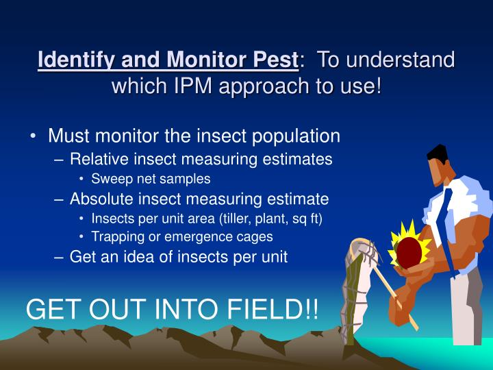 Identify and Monitor Pest