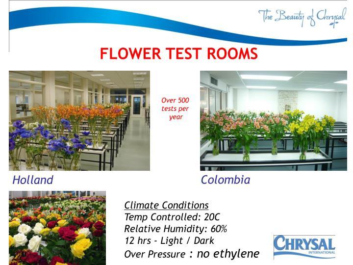 FLOWER TEST ROOMS