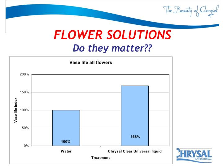 FLOWER SOLUTIONS