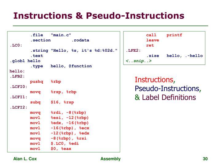 Instructions & Pseudo-Instructions