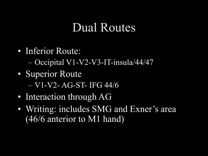 Dual Routes