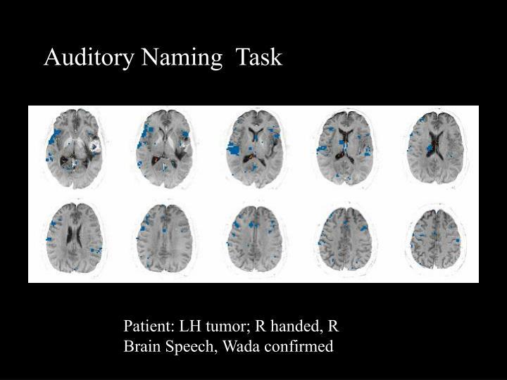 Auditory Naming  Task