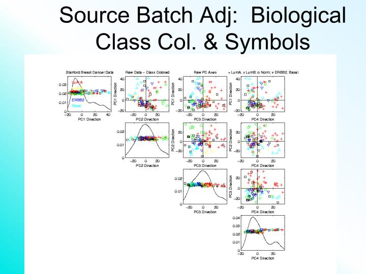Source Batch Adj:  Biological Class Col. & Symbols