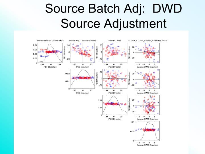 Source Batch Adj:  DWD Source Adjustment