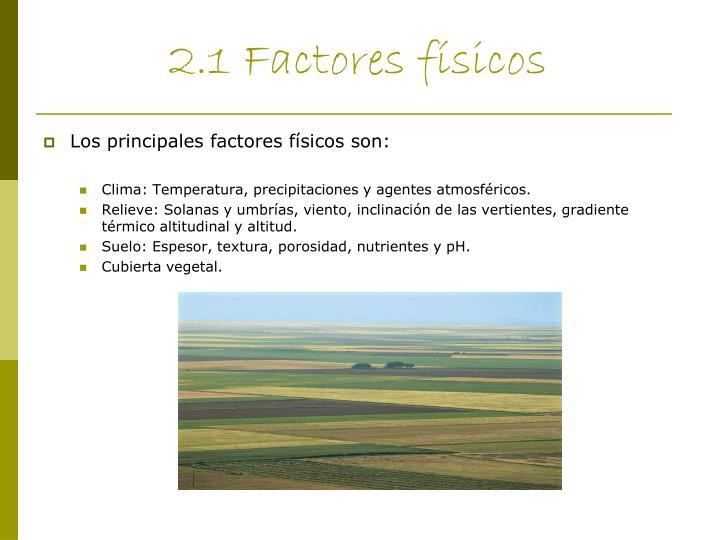 2.1 Factores físicos