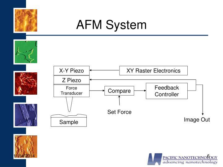 AFM System