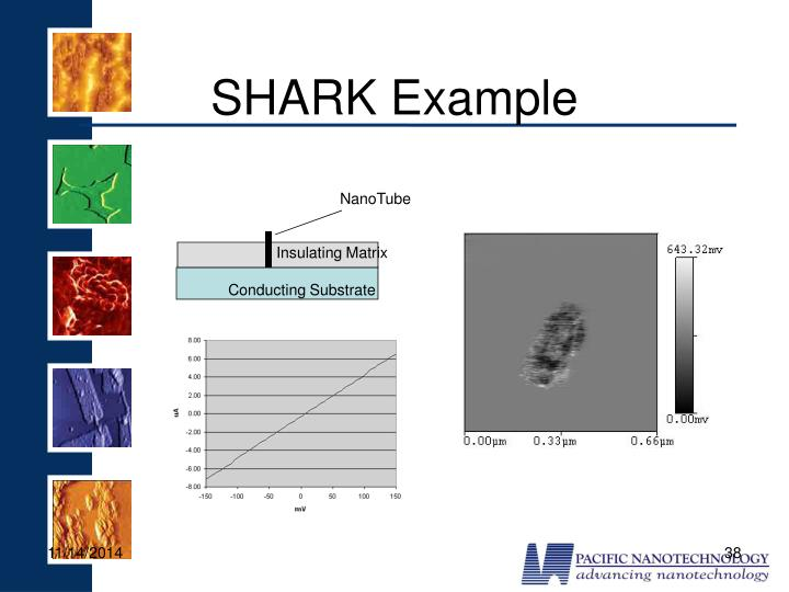 SHARK Example