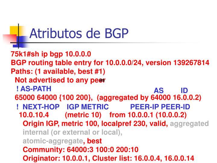 Atributos de BGP