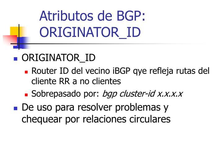 Atributos de BGP: ORIGINATOR_ID