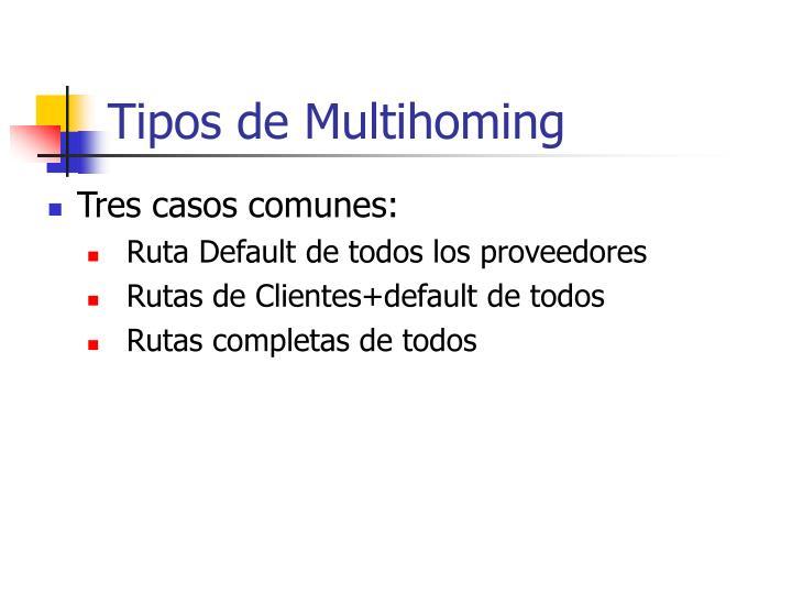 Tipos de Multihoming