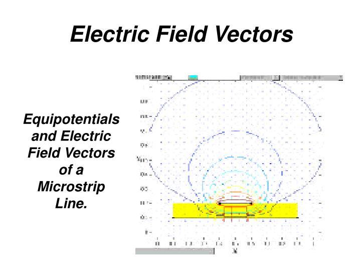 Electric Field Vectors