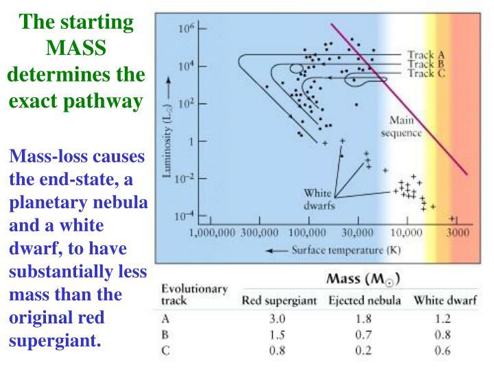 The starting MASS determines the exact pathway