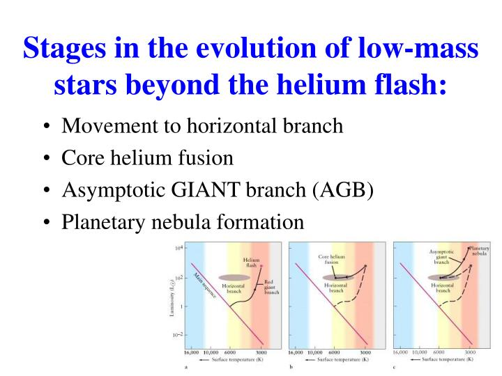 Stages in the evolution of low-mass stars beyond the helium flash: