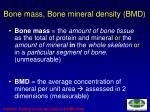 bone mass bone mineral density bmd