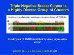 triple negative breast cancer is a highly diverse group of cancers