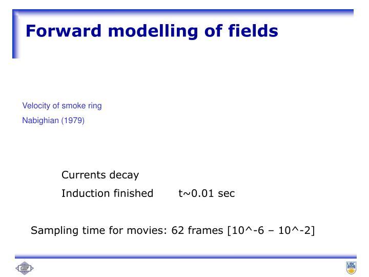 Forward modelling of fields