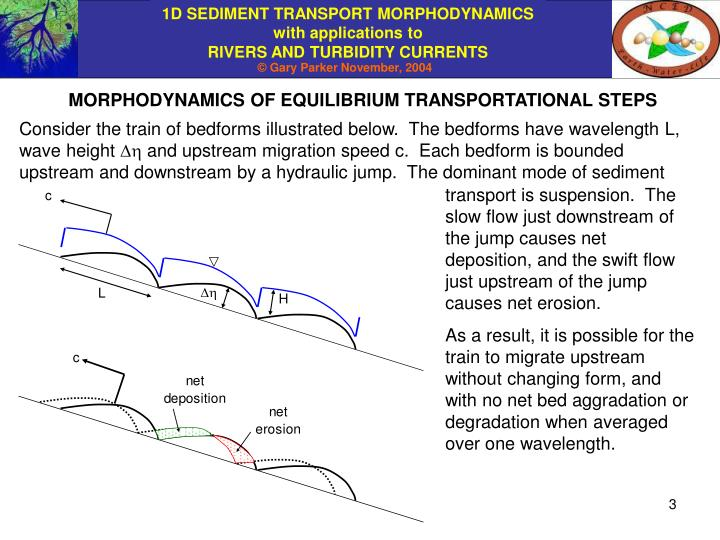 MORPHODYNAMICS OF EQUILIBRIUM TRANSPORTATIONAL STEPS