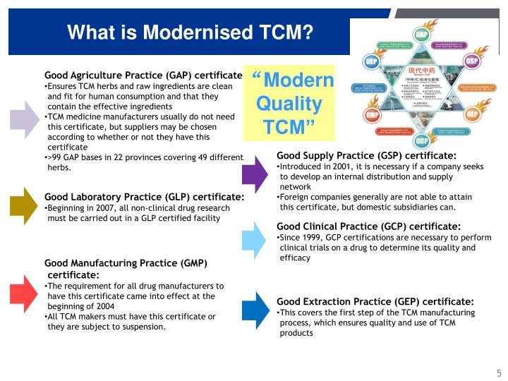 What is Modernised TCM?
