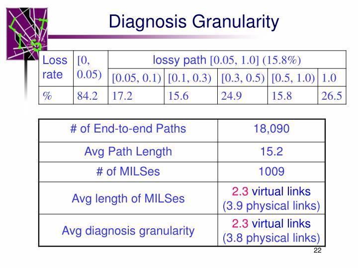 Diagnosis Granularity