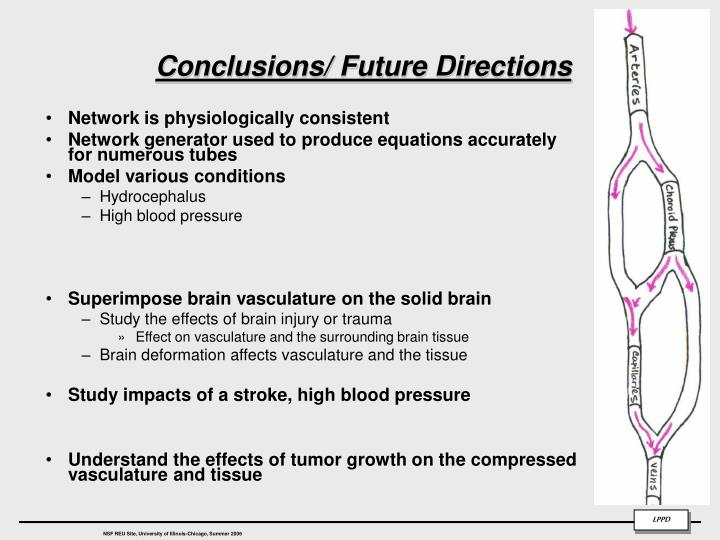 Conclusions/ Future Directions