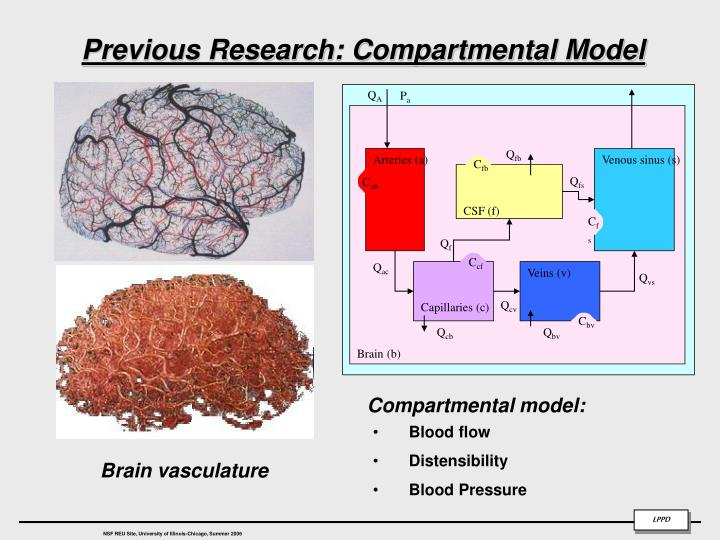 Previous research compartmental model
