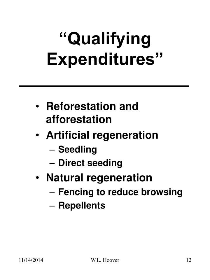 Reforestation and afforestation