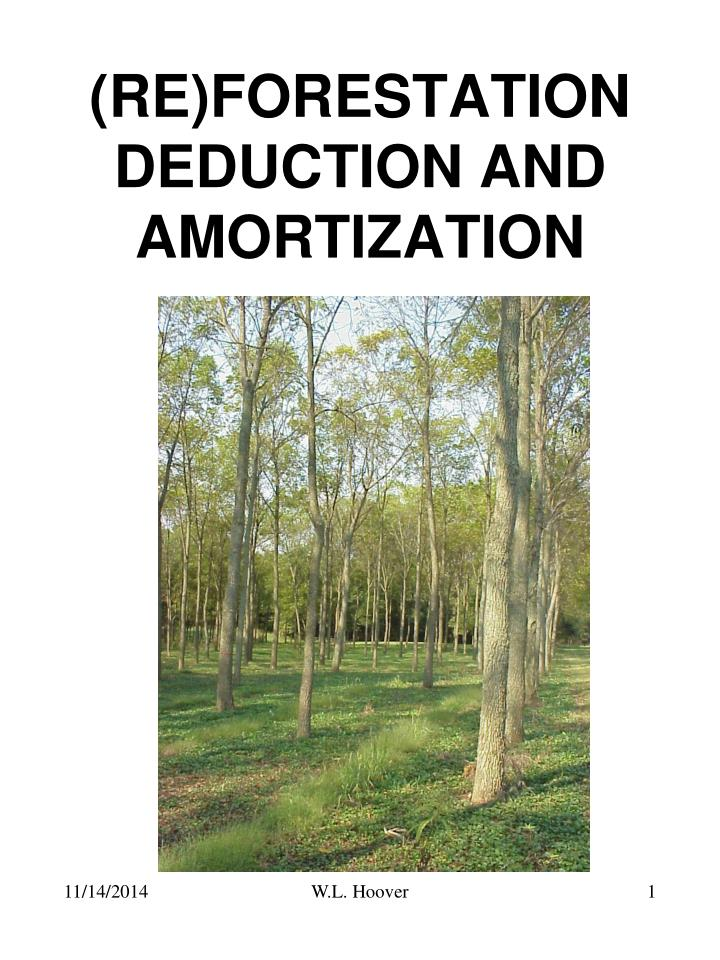 Re forestation deduction and amortization