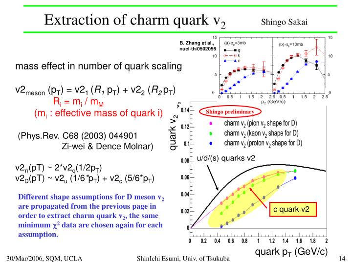 Extraction of charm quark v