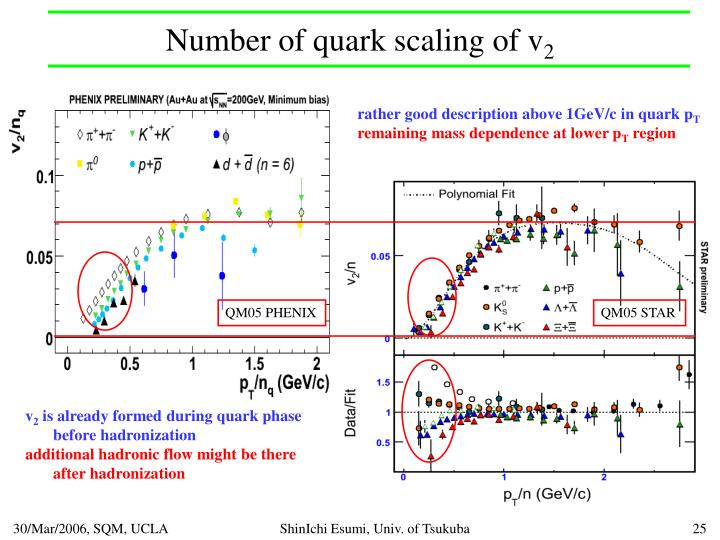 Number of quark scaling of v