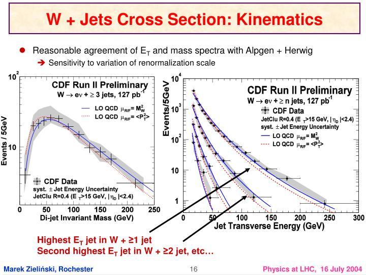 W + Jets Cross Section: Kinematics