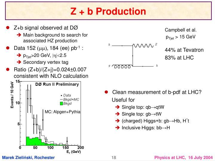 Z+b signal observed at D