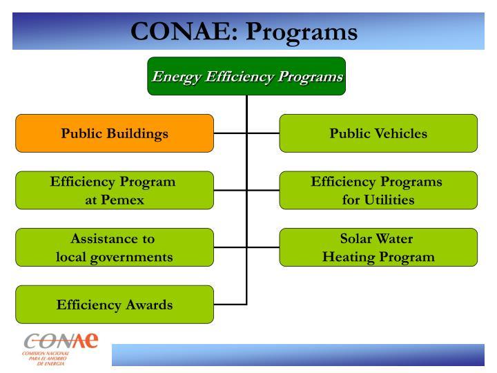 CONAE: Programs