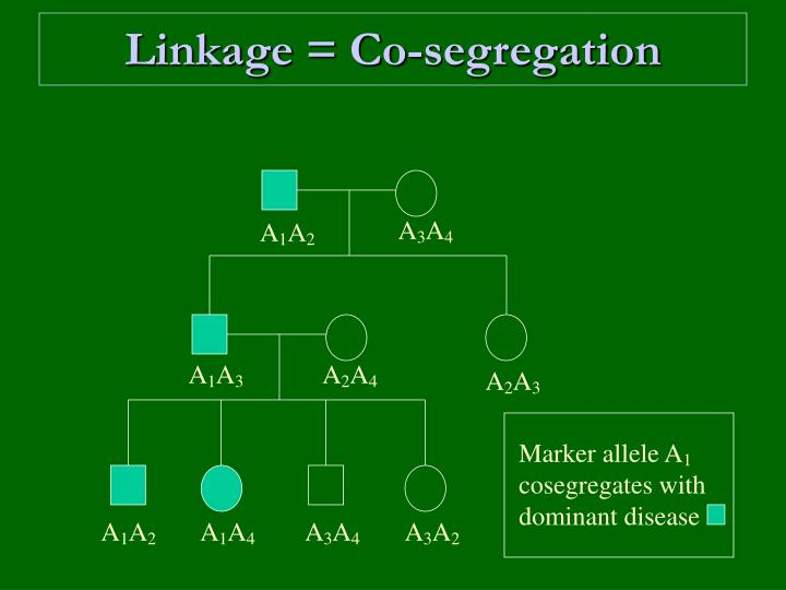 Linkage co segregation