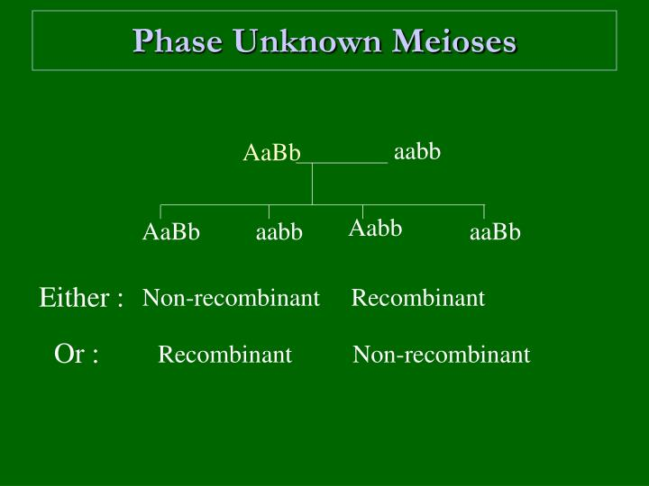Phase Unknown Meioses