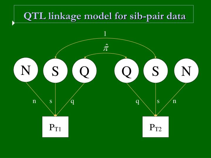 QTL linkage model for sib-pair data