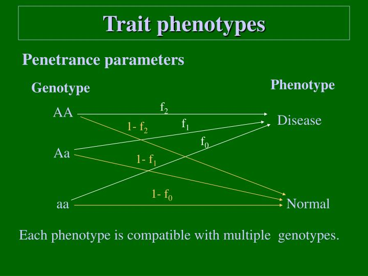 Trait phenotypes