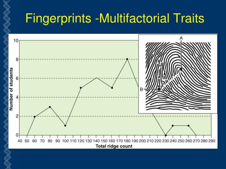 Fingerprints -Multifactorial Traits