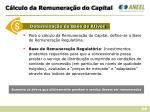 c lculo da remunera o do capital1