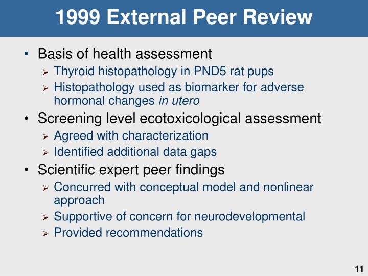 1999 External Peer Review
