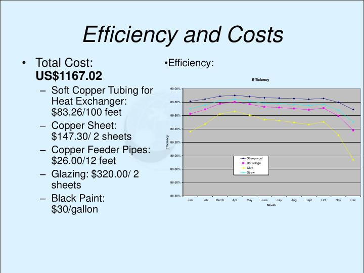 Efficiency and Costs
